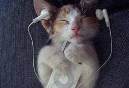 有听歌赚钱的软件吗?听歌就能赚钱的软件下载